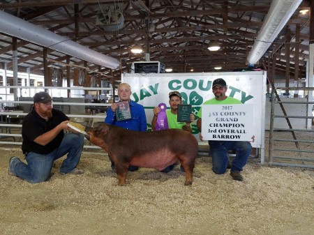 3rd Overall Barrow & Champion Duroc