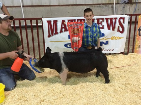 4th-Overal-Barrow-&-Champion-Hampshire-Barrow---Don-Rodeffer-Classic--sired-by-Outlaw---shown-by-Dishman's---Bred-by-Shaffer's
