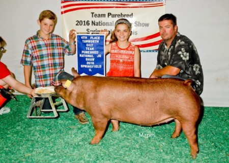 4th Overall Tamworth Gilt