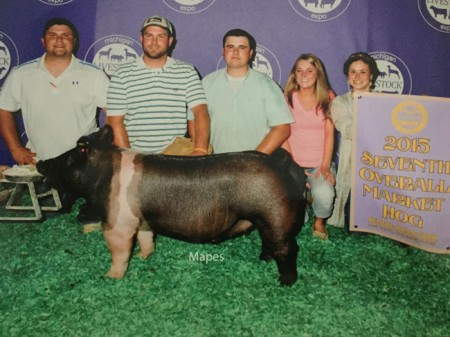7th-Overall-2015-MLE---Outlaw---bred-by-Todd-Welch