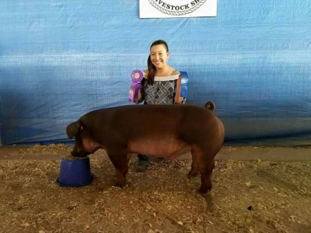 Champion Duroc - 2017 Cameron County Livestock Show, TX - In Motion -  sb Audrey Morales