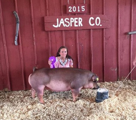 Champion-Duroc-Gilt-2015-Jasper-Co-Open-Show--Dust-Storm---Jocelyn-Johns---bred-by-Grafs