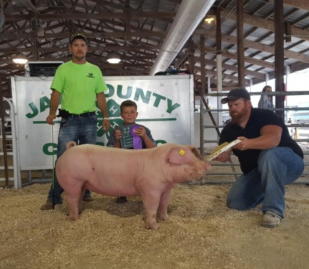 Champion Landrace Gilt
