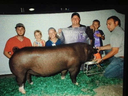Champion-Poland-Gilt-2015-IL-State-Fair-Jr-Show---Power-Drive---bred-by-Stayton-Farms---Shown-by-Layna-Hanold
