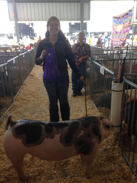 Champion-Spot-Gilt---Delaware-State-Fair---Game-Changer---bred-by-AJ-Hurd