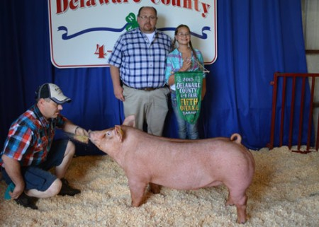 Champion-Tamworth-&-5th-OA-Barrow---2015-Delaware-Co---Record-Breaker---shown-by-Aiden-Smith---Bred-by-Pegg