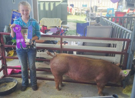 Champion-Tamworth-Barrow---2015-Hendricks-Co---REcored-Breaker---Shown-by-Rylie-Lambert---bred-by-Woods-Superior-Show-pigs-2