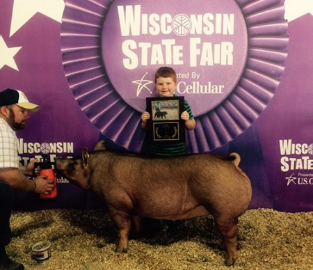 Champion-Tamworth-Gilt---2015-Wisconsin-State-Fair---shown-by-Lucas-Bradshaw---bred-by-Us---sold-online