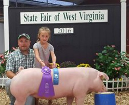 Champion Chester Gilt