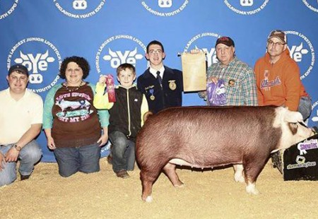 Champion Hereford Gilt