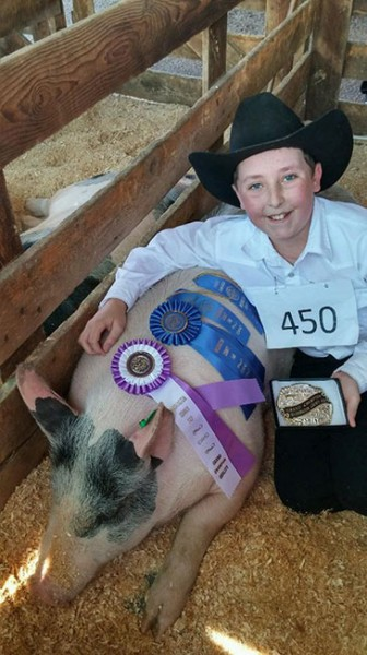Grand-Champion-2015-Washington-Co,-ID---Thrillere---shown-by-AJ-Iverson---bred-by-Coralee-Bryant-&-Cody-Bell