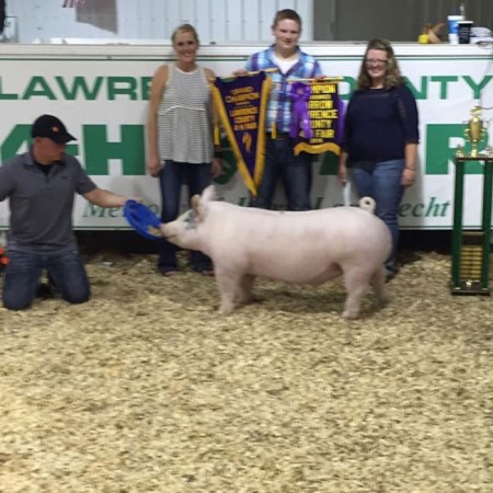 Grand Champion Barrow