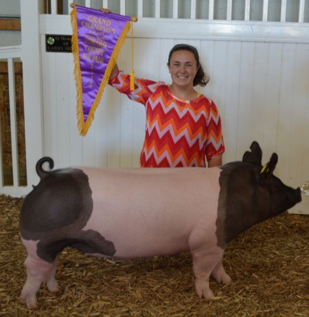Grand-Champion-Gilt---2015-Howard-Co,-IN---Bates-Motel---Mackenzie-Hoddup---Lynsee