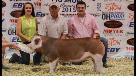 Grand-Champion-Hereford-Gilt-2015-OH-State-Fair---Family-guy--bred-by-John-Hankes---shown-by-Gus-Mitfchem