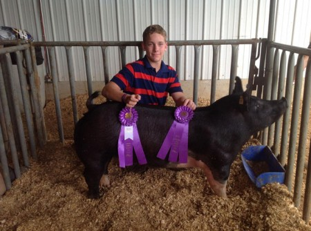 Grand-Champion-Market-Gilt---2015-Gibson-County---Warrior---bred-by-Chris-Schillinger