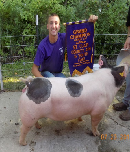 Grand-Champion-Market-Gilt---2015-St