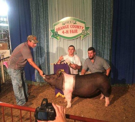 Grand Champion Barrow Overall