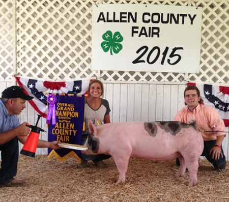Grand-Champion-Overall-Barrow-2015-Allen-County-Fair---Sugar-bear--bred-by-lewis-livestock---shown-by-beth-schaefer