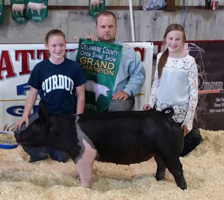 Grand-Champion-Overall---Champion-Hampshire-Gilt---Delaware-Co