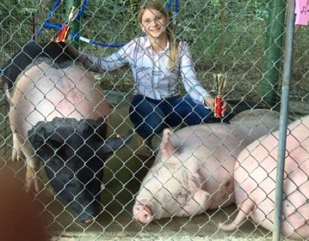 Grand-Champion-&-Reserve-Champion-Market-Hog---Bentron,-TN-Amber-Collins---bred-by-us
