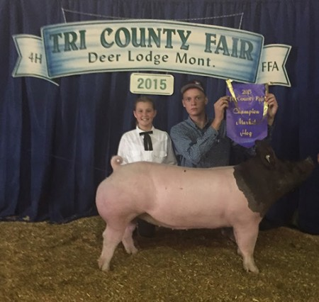 Grand-Champion---Tri-Co-Fair---Mile-High---bred-by-Jay-Deaton---shown-by-Alaina-Barger