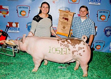 Res--Champ-Cross-Gilt---2015-NSR-WTC---Sired-by-Monument-Circle