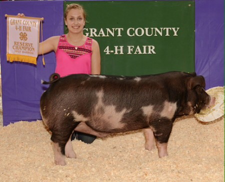 Res-Champ-Spot-Barrow-Grant-Co-Fair-IN-&-Converse-Open-Show--Shown-by-Tori-Templin--placed-by-JRJ---Bred-by-Brown-Show-Pigs---sold-at-CAS