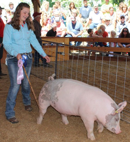 Reserve Heavy Weight 4-H