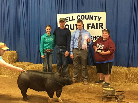 Reserve-Breed-Champion-2015-Bell-County-Fair---sired-by-Trash-Talk---showny-by-Payton-Aldrich