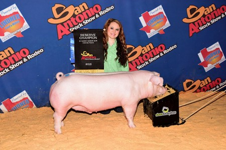 Reserve-Champion-Chester---2015-San-Antonio-Stock-Show---sired-by-Si
