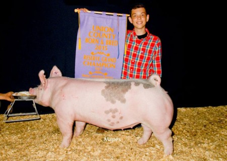 Reserve-Champion-County-Born-&-Raised---sired-by-Bates-Motel---shown-by-Ayden-Adams