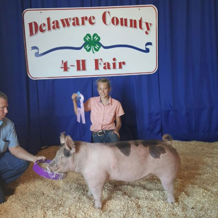 Reserve-Champion-Cross-Gilt--2015-Delaware-County-Fair---sired-by-Sugar-Bear---Lauren-Nixon---bred-by-us-2
