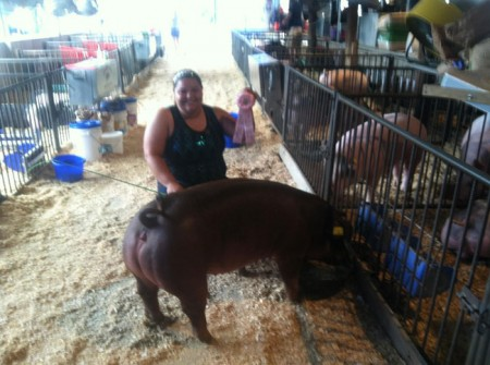 Reserve-Champion-Duroc-Gilt-2015-Clinton-Co---IN-Motion