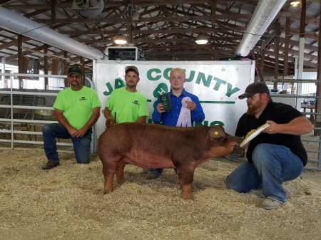 Reserve Champion Duroc Gilt
