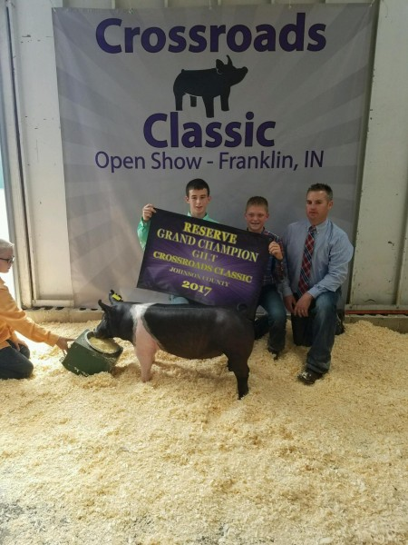 Reserve Champion Gilt Overall
