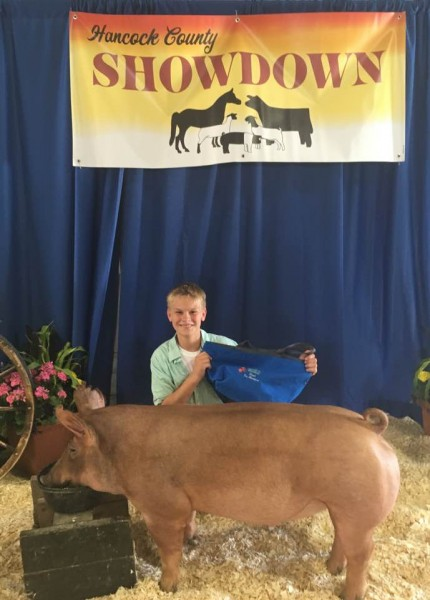 Reserve Champion Tamworth Barrow