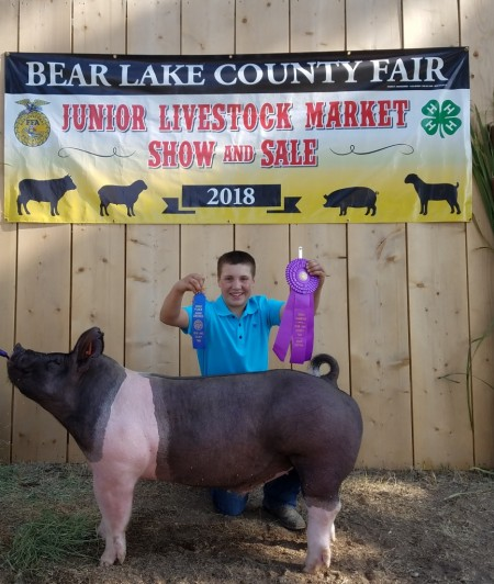 3rd Overall Market Hog