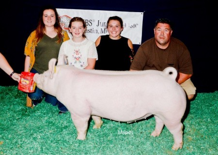 Reserve Overall Purebred and Champion York