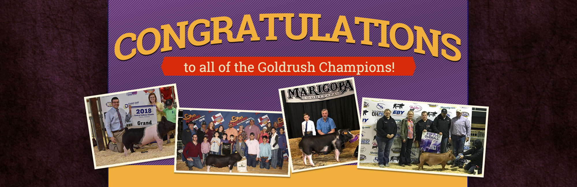 Congratulations to all of the Goldrush Champions!