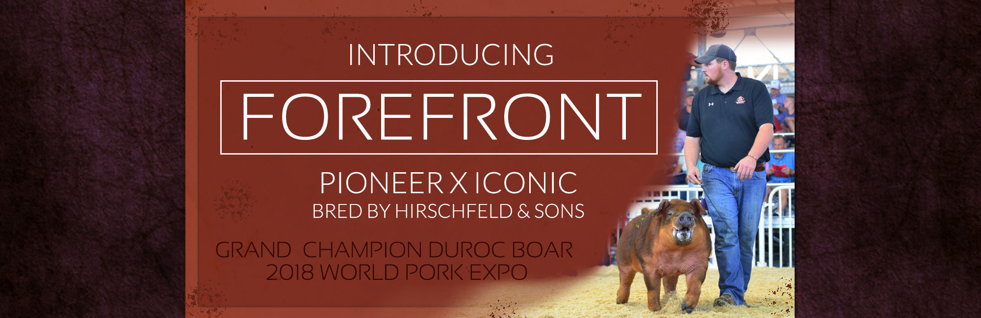 Introducing Forefront