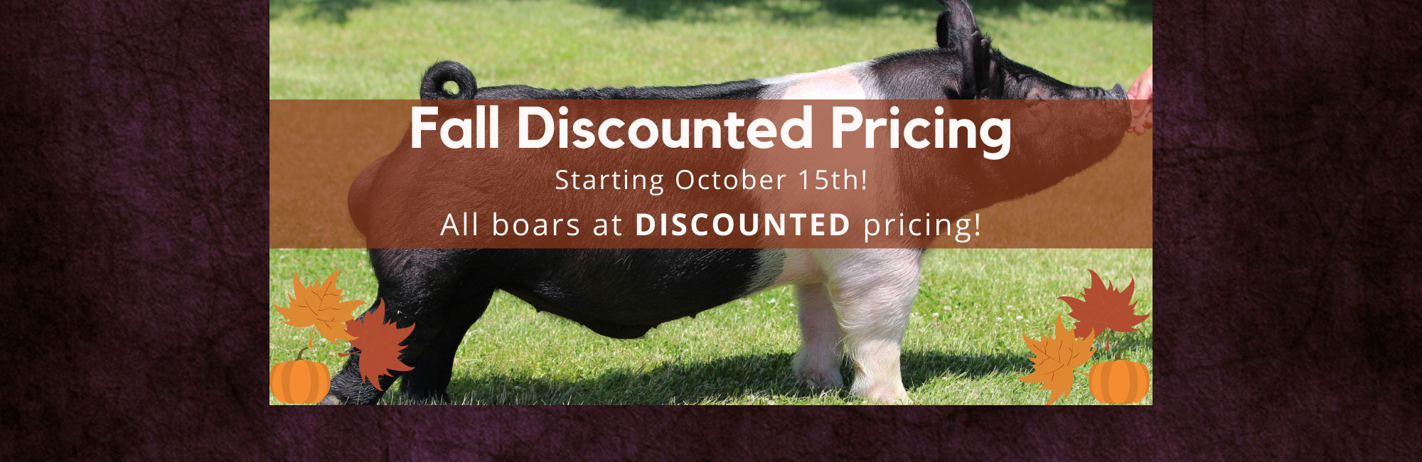Fall Pricing